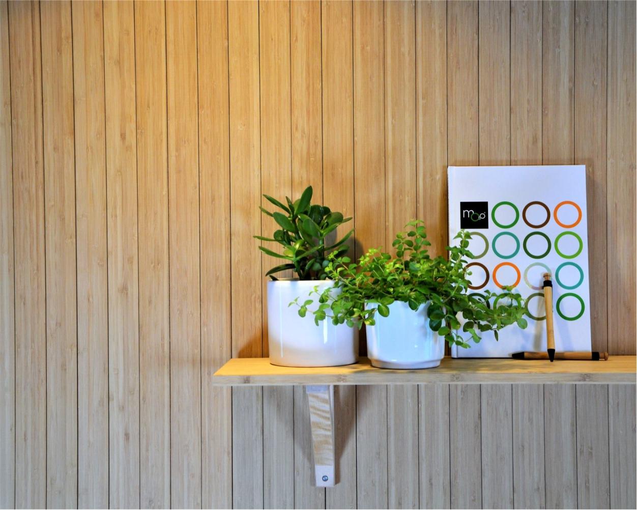 Moso Flexbamboo - catalog  placări pereți
