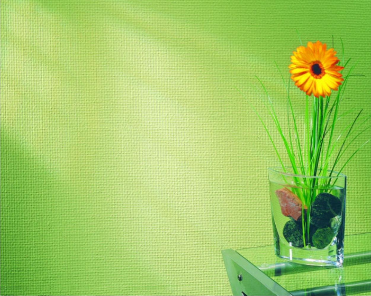 design interior, amenajare pereți -  tapet din fibră de sticlă